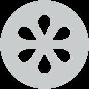 seeds logo